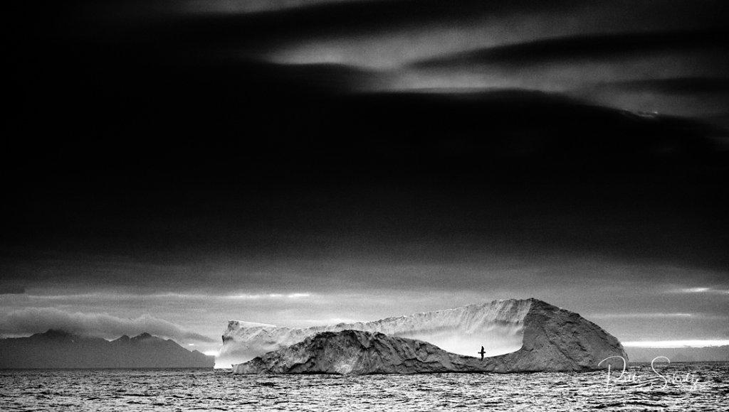 Iceberg and bird at Dusk